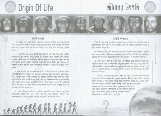 origin-of-life_2.jpg